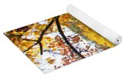 Fall Trees 4 Of Wnc Yoga Mat