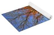 Fall Trees 5 Of Wnc Yoga Mat