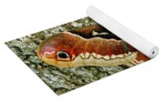Female Promethea Moth Yoga Mat