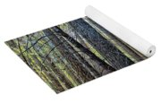 Forest Morning Yoga Mat