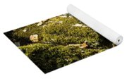 Forest Moss Yoga Mat