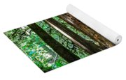 Forest Of Cathedral Grove Collection 2 Yoga Mat