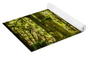 Forest Of Cathedral Grove Collection 3 Yoga Mat