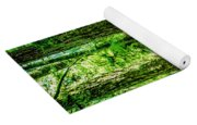 Forest Of Cathedral Grove Collection 9 Yoga Mat