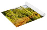 Forest Reflecting In Lake Yoga Mat