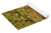 Fractal Leaf Mat-- 2 Yoga Mat