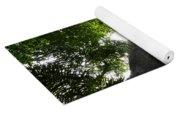 Giant Cashew Tree Amazon Rainforest Brazil Yoga Mat