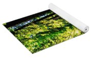 Giant Redwood Forest Yoga Mat