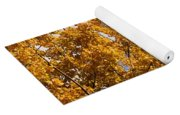 Golden Autumn Leaves And Blue Sky Yoga Mat