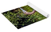 Goliath Heron By Water Yoga Mat