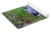 Great Blue Heron In Nature Yoga Mat