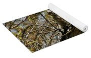 Great Horned Owlets Photo Yoga Mat