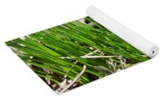 Green And Fresh Yoga Mat