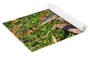 Green Heron Yoga Mat