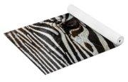 Grevy's Zebra 4 Yoga Mat