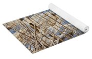 Ice Coated Bullrushes Yoga Mat