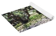 In The Depth Of Enchanting Forest V Yoga Mat