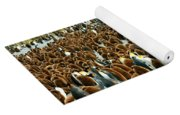 King Penguin Colony Yoga Mat