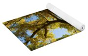La Boca Ranch Cottonwood Yoga Mat