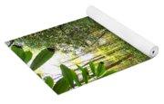 Lamance Creek Vertical Yoga Mat