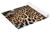 Leopard At Rest Yoga Mat
