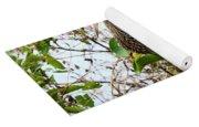 Limpkin In A Tree Yoga Mat