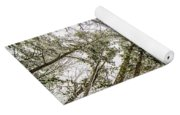 Looking Up At Snow Covered Tree Tops Yoga Mat
