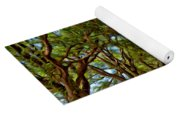 Louisiana Dream Drive  Yoga Mat
