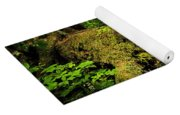 Lush Temperate Rainforest Yoga Mat