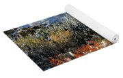 Many Glacier Colors Yoga Mat