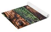 Giant Sequoias Mariposa Grove Yoga Mat