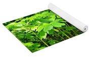 Mayapple Plants Yoga Mat