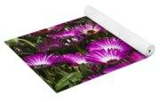 Mesembryanthemums 3 Yoga Mat