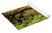 Moss Covered Trees In A Forest Yoga Mat