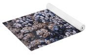 Mussels And Barnacles, Low Tide Yoga Mat