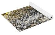 Mussels Barnacles Seaweed Closeup Yoga Mat