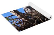 Nesting Great Blue Heron Yoga Mat