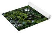 Oak Alley Plantation 2 Yoga Mat