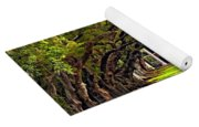 Oak Alley Yoga Mat