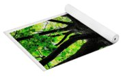 Old Barks Diptych - Deciduous Trees Yoga Mat