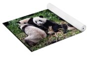 Pandas In China Yoga Mat
