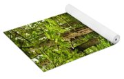 Path In Temperate Rainforest Yoga Mat