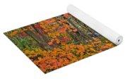 Perkiomen Creek - Perkiomenville Pa - Autumn Foliage Yoga Mat