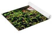 Pickerel Frog Yoga Mat
