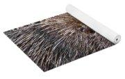 Porcupine Yoga Mat
