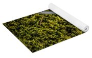 Red Berries Silver Spoon Moss Yoga Mat