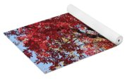 Red Leaves On Tree Yoga Mat