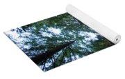 Redwoods II Yoga Mat