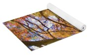 Reflections Of A Colorful Fall 002 Yoga Mat