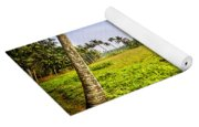 Rice Field Yoga Mat